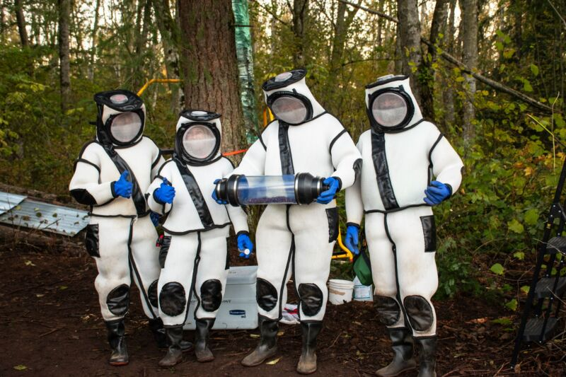 What to wear when you're battling giant, venomous hornets