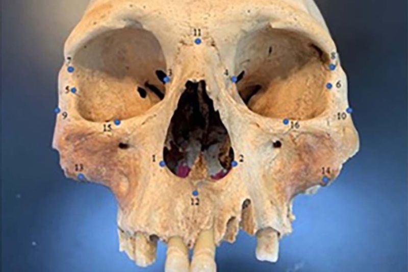Earlier this year, researchers analyzed the skulls of early Caribbean inhabitants, using 3D facial